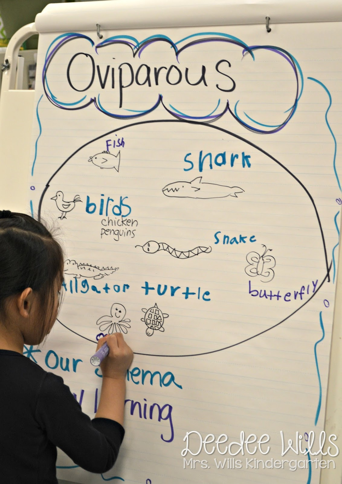 Oviparous Animals Lesson Plans Peek At My Week