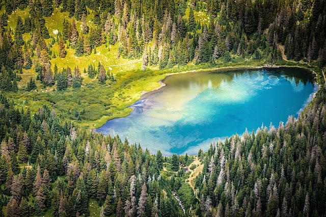 Beautiful Scenery lake and forest from above at Crater Lake National Park