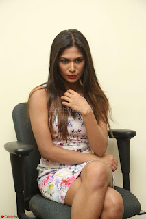 Nishi Ganda stunning cute in Flower Print short dress at Tick Tack Movie Press Meet March 2017 140.JPG