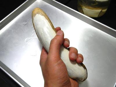 ナギナタシロウリガイ おそろしくカッコいいフォルム 人が握るためにこの形に進化したとしか思えない