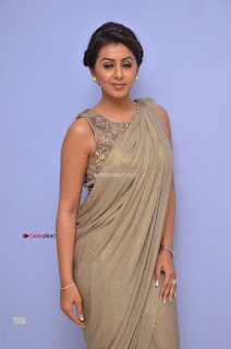 Nikki Galrani in Saree 068.JPG