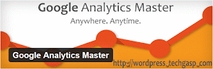 Google Analytics Master plugin