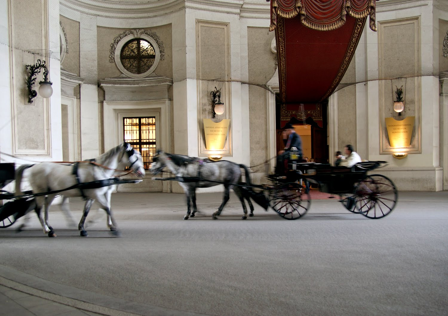 fastest ride in vienna - the horse carriage