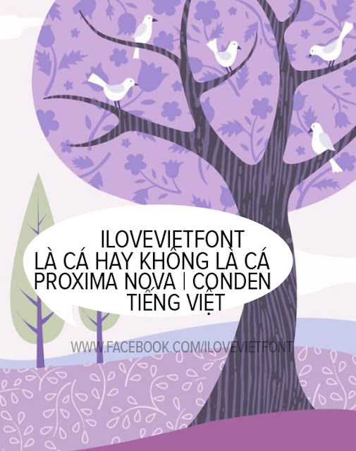 [Serif] VNF Proxima Nova Việt hóa