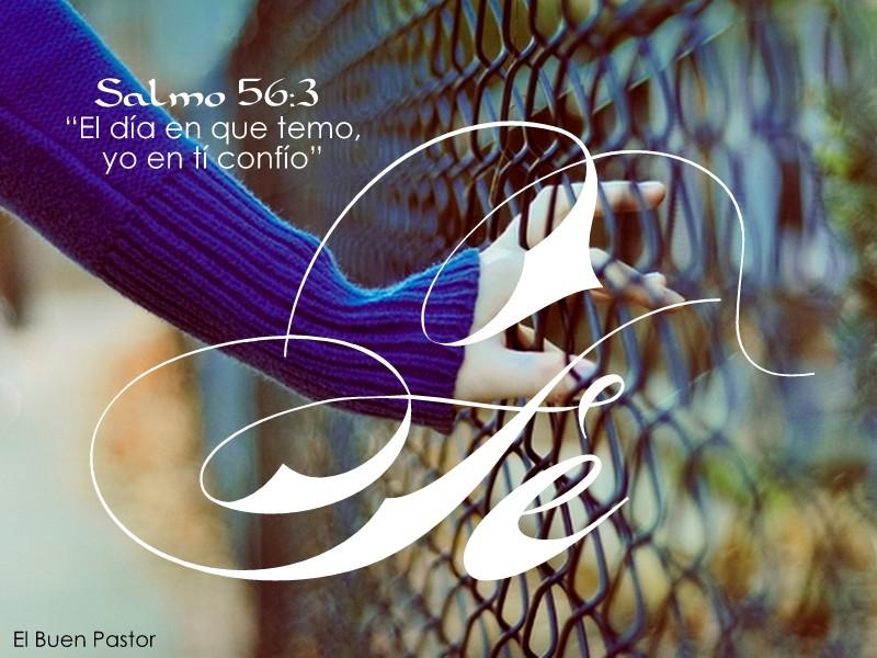 YO SOY EL BUEN PASTOR: Salmo 56:3