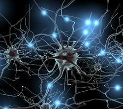 Blue chip: Redes neuronales: quizá no tan cerca del cerebro humano
