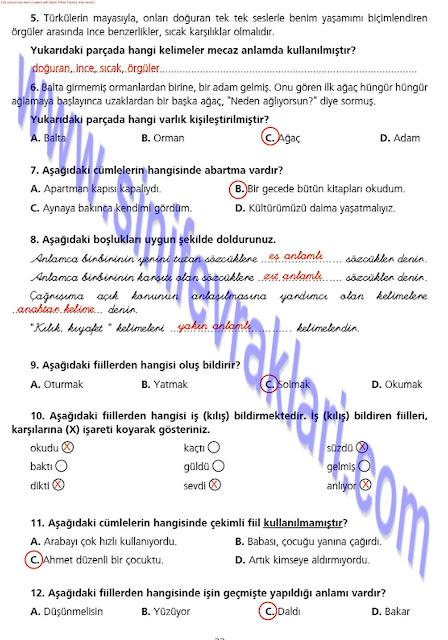 7. Sınıf Ezde Yayınları Türkçe Çalışma Kitabı Cevapları Sayfa 33
