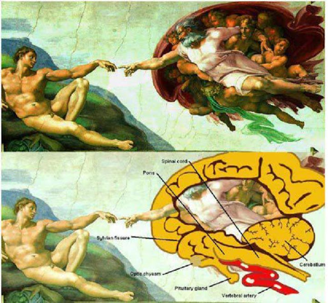 The Creation of Adam Atheist