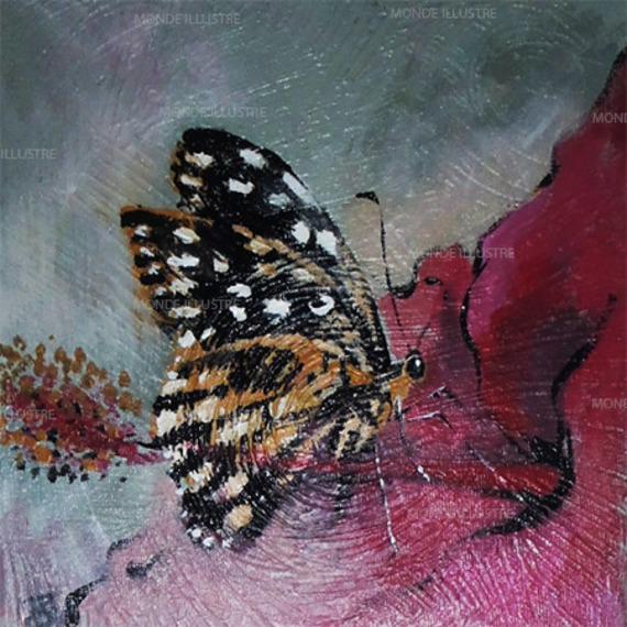 portail vers l 39 eveil la metaphore du papillon. Black Bedroom Furniture Sets. Home Design Ideas