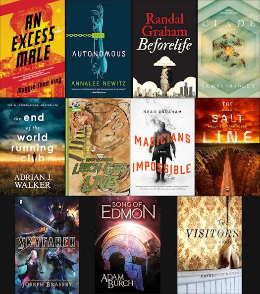 2017 Debut Author Challenge Cover Wars - September Winner