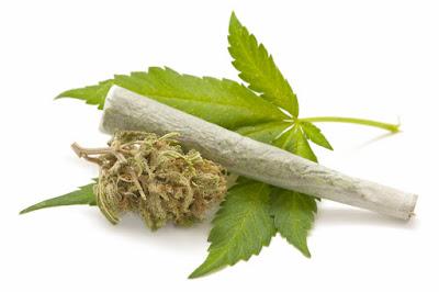 Golongan-gologan Narkotika dan Efeknya