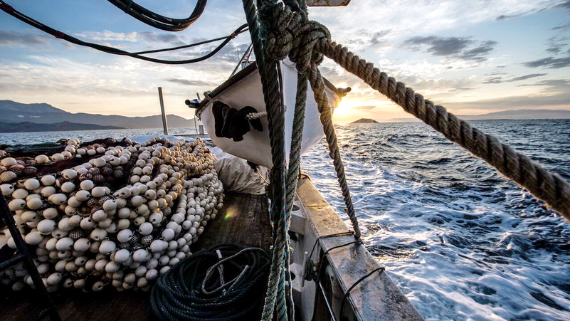 Πρόγραμμα MINOUW: Καινοτόμες πρακτικές για ζωντανές θάλασσες