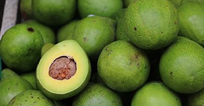 buah, manfaat buah, manfaat kesehatan, manfaat alpukat, khasiat alpukat, buah alpukat, kesehatan, artikel kesehatan, nutrisi, kandungan buah alpukat, gizi alpukat, nutrisi alpukat,