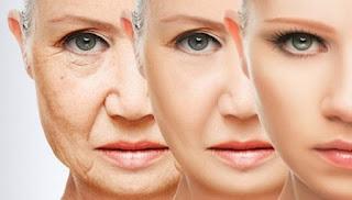 Manfaat pengecap buaya untuk wajah dan kulit badan sudah bukan menjadi diam-diam lagi banyak pr Manfaat Daun Lidah Buaya Untuk Kencantikan Kulit Wajah