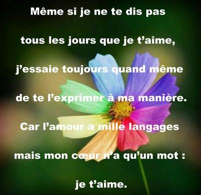 Belles Petits Mots Damour Messages Damour