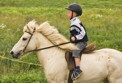 Visiter l'Islande avec ses Enfants