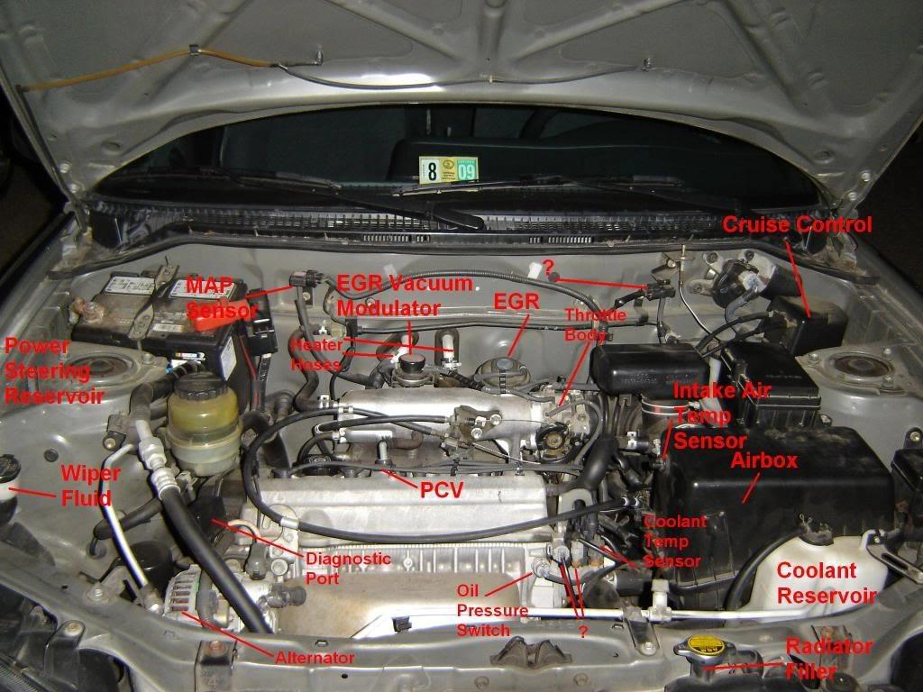 2001 2002 2003 Toyota Rav4 Caution Label Vacuum Diagram Part