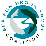 Sea Run Brook Trout Coalition