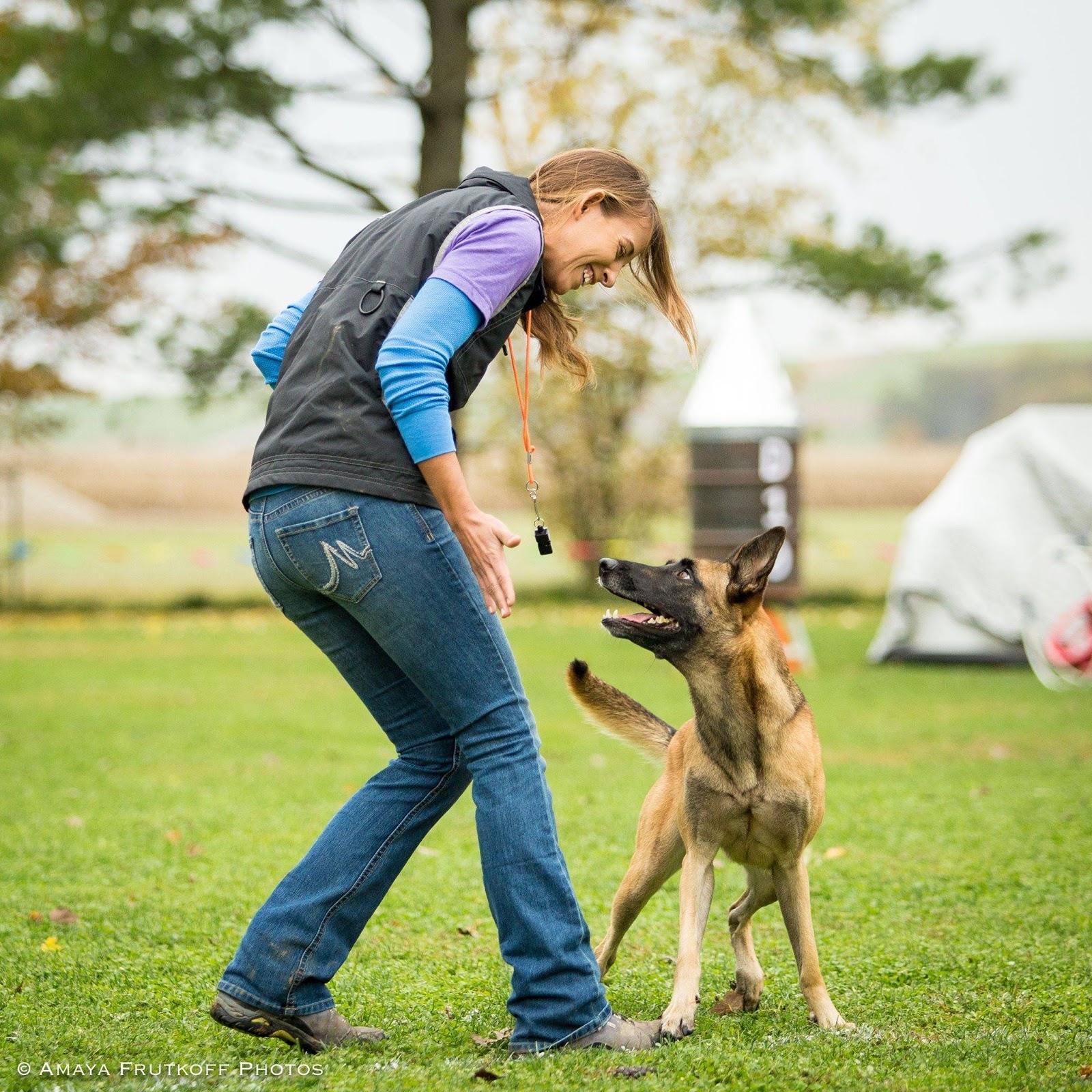 Fenzi Dog Training Academy