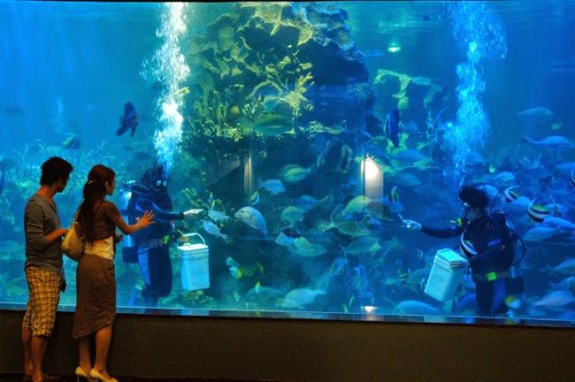Nha Trang's Vinpearl Land Luxury Resort 16