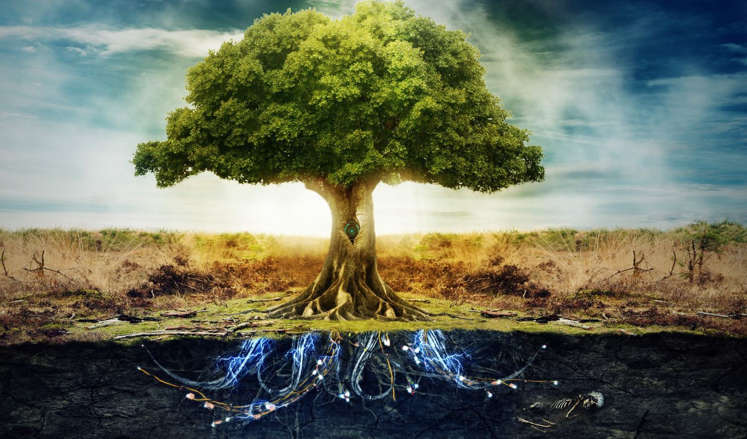 Revelation 22:1-2 - The River of Life and Tree of Life | Jesus: The
