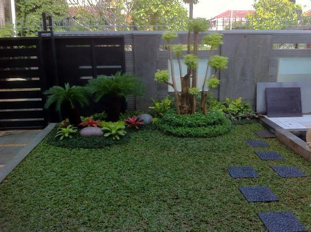 Tukang Taman Tangerang karawaci