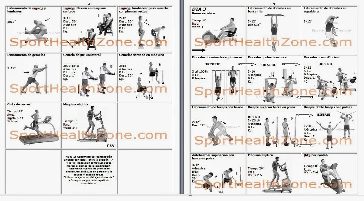 Rutina de ejercicios for Rutinas gimnasio