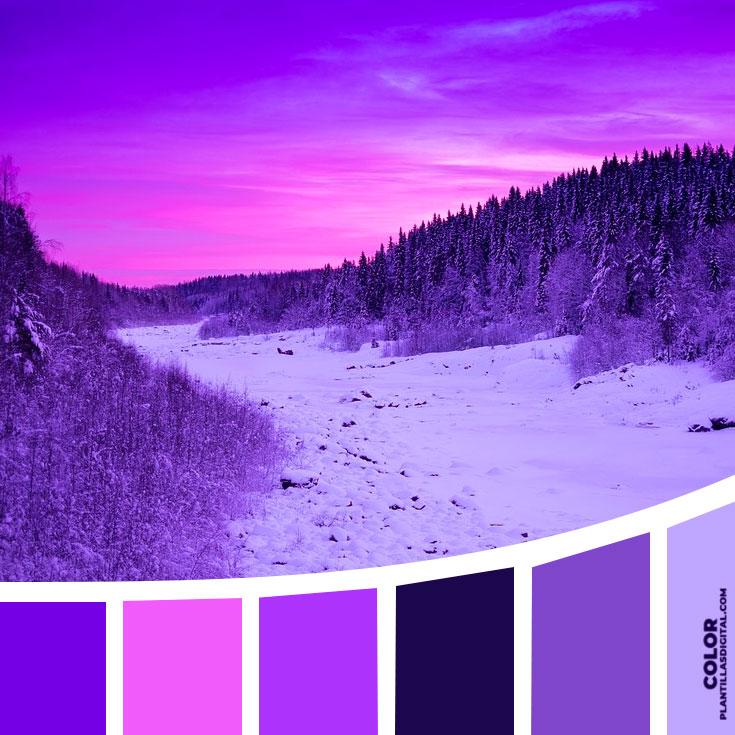 color_462
