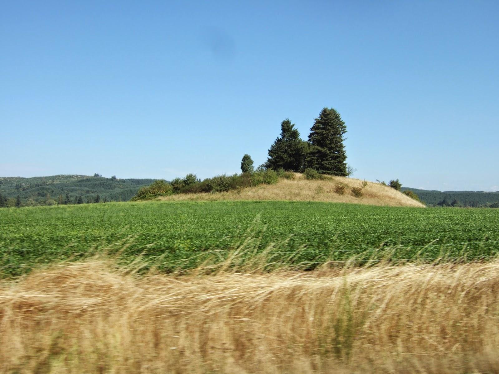 Reading The Washington Landscape Boistfort Valley Mound