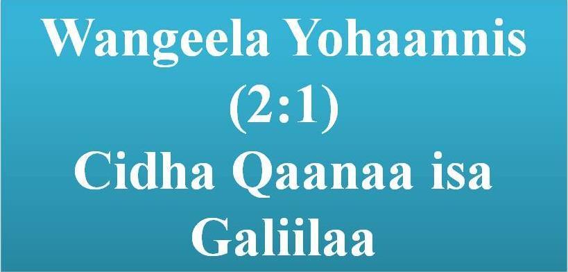 Waldaa Duuka Bu`ootaa: WN 013 Cidha Qaanaa Isa Galiilaa