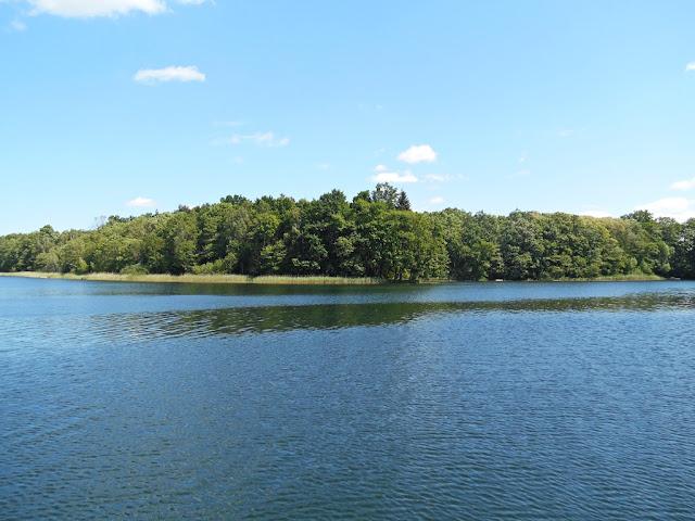 woda, las, niebo, wypoczynek nad wodą