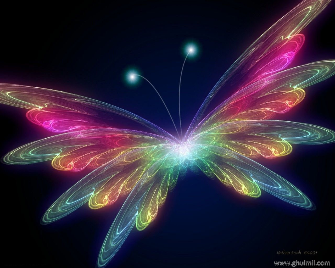 Beautiful 3D HD Butterfly Colorful Background Wallpapers