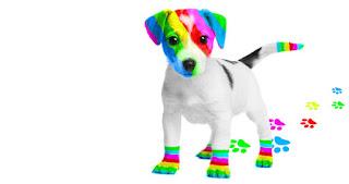 El perro arcoiris de Cristina