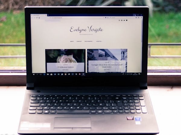 ✘Feiten Over De Blog & Blogger Tag✘