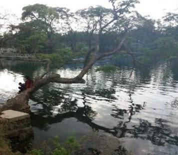 Danau Ronggojalu probolinggo jawa timur sekitarnya