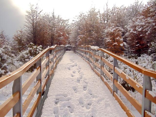 El Calafate durante o inverno