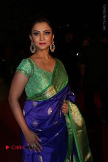Actress Adah Stills in Blue Silk Saree at Gemini TV Puraskaralu 2016 Event