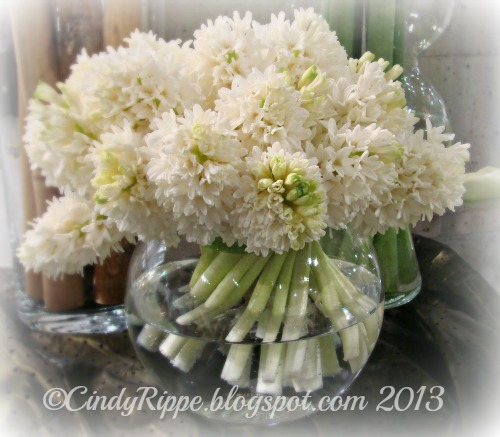 White flowers, Hyacinths, Chicago Flower and Garden Show, Hyacinths in a Vase, Florals-Family-Faith, Cindy Rippe