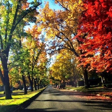 Boise in the Fall
