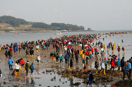 ملحدات موقع صهيوني وحق هذه العشبة انشقاق البحر في كوريا ظاهرة طبيعية