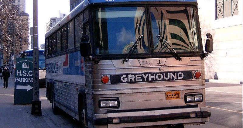 Fort Mac Greyhound