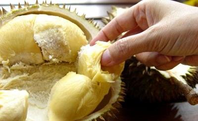 Jenis Durian Lezat yang ada di Indonesia