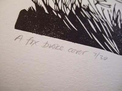 A fox broke cover