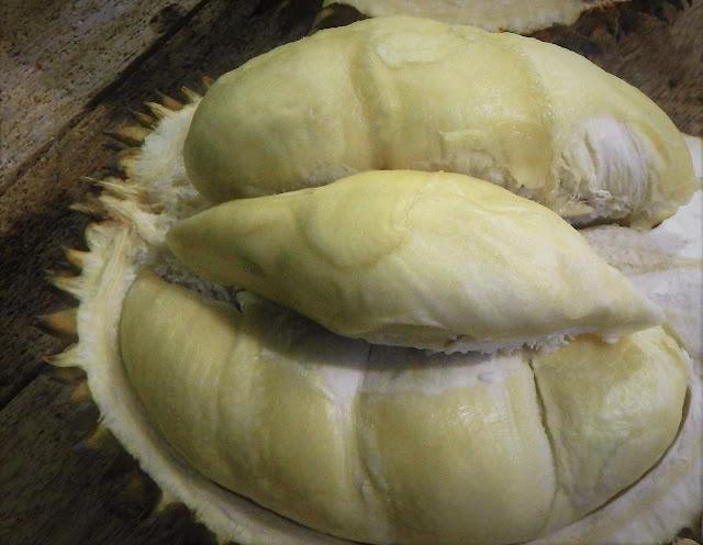 BIBIT DURIAN PERWIRA: Durian dari Sinapeul dengan rasa kebarat-baratan