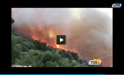 http://tgs.gds.it/2017/05/13/incendi-in-sicilia-si-fa-la-conta-dei-danni_665100/