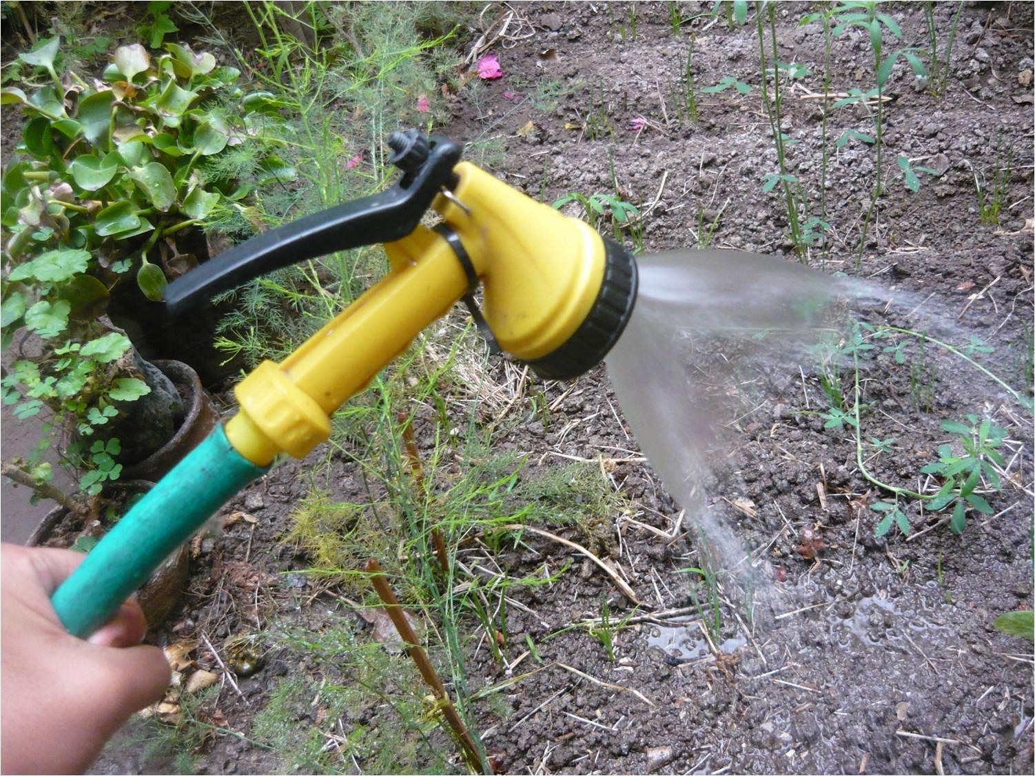 Alternativa ecol gica con qu riego las plantas en el for Manguera de jardin 1 2