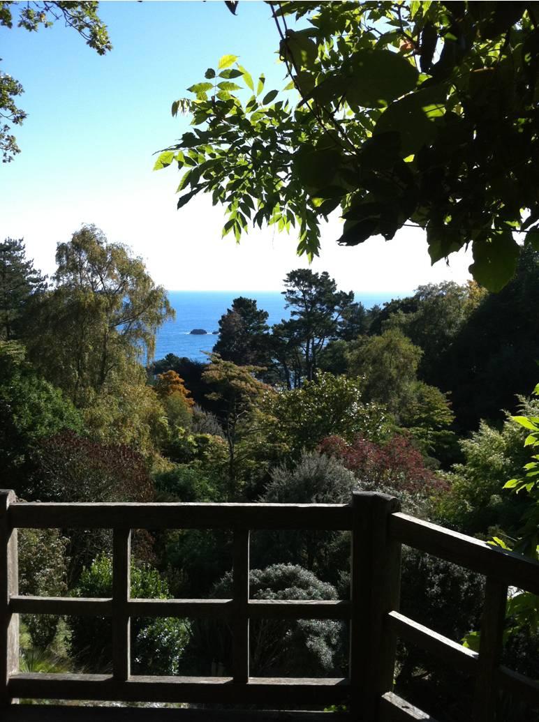 The Good Garden Collective: National Trust Gardens To