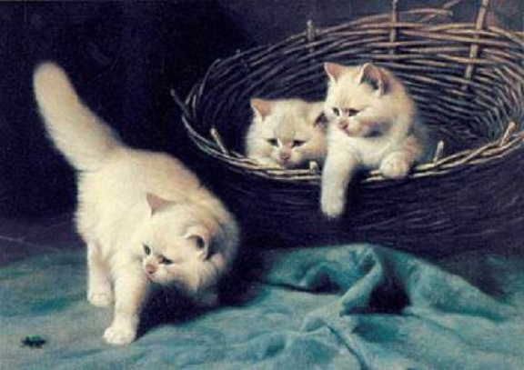 "FRIENDSHIP ""7"" by ""5"" CARD ""White Angora Kittens"""