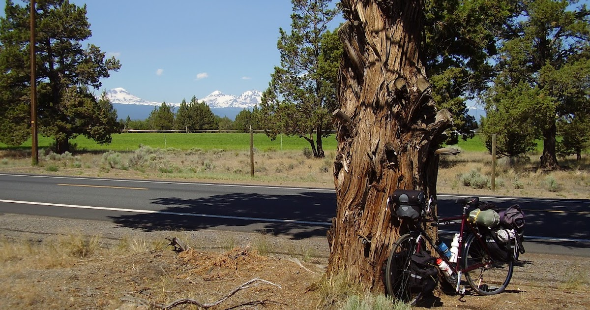 Ride Bikes, Drink Coffee: Riding The Scenic Bikeways In ...