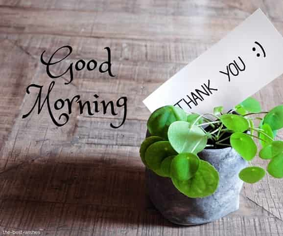 good morning thank you wishes images to friends